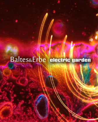 Electric Garden the second Album from Baltes&Erbe